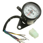 Universal Motorcycle Dual Odometer Speedometer Gauge LED Turn Signal Night Light