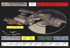 "STAR TREK TNG - TV POSTER (NCC-1701-D - CUTAWAY / SCHEMATICS) (40 X 27"")"
