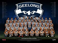 Official AFL Geelong Cats 2017 Team poster 60cm X 80cm print