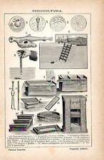 Stampa antica PISCICOLTURA ITTICOLTURA impianti attrezzature 1910 Old print