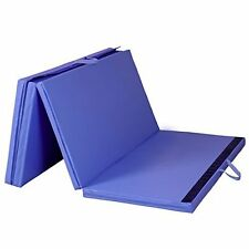 Thick Folding Panel Gymnastics Mat for Training by Globe House Product