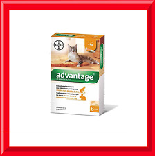 6Pack  Bayer Advantage for cats under/up to 4kg