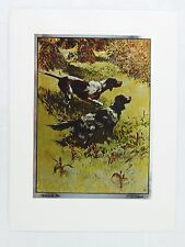 Vintage 1960's R. H. Palenske Right on the Nose Color Foil Etch Print