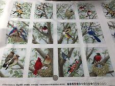 Fabric Bird Quilt Panel on Cream Cotton Wild Birds 12 Squares 21x22 Elizabeth BI