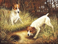Robert J. May Open Edition Print - Jack Russell Terrier 6
