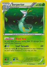 Serperior Holo Rare Pokemon Card BW Base 6/114