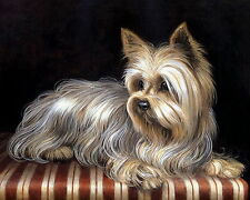 Animal Pet Art Print Pet Yorkie Beautiful Yorkshire Terrier Dog Portrait