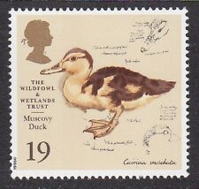 GB - Muscovy Duck - 1996 19p Stamp MNH - 50th Anniversary Wildfowl & Wetlands