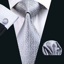 SN-484 Mens Business New Silk Classic jacquard Woven Gray Wedding Tie Necktie