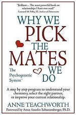 Why We Pick the Mates We Do: A Step-by-step Program To Select a Better Partner