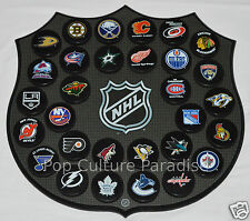 "HOCKEY PUCKS ALL 30 NHL TEAMS Complete Set ""Basic"" WITH WALL MOUNT PLAQUE BOARD"