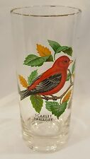 Vintage West Virginia Glass RED BIRD Scarlet Tanager Tumbler Hi-Ball Glass Cup