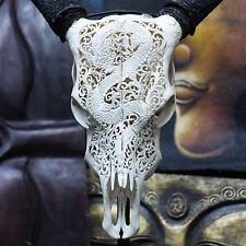 Hand Carved Dragon Steer/ Cow Skull + Horns/ Bull/ Longhorns/ Buffalo Taxidermy