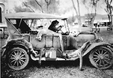 ANTIQUE REPRO 8X10 PHOTOGRAPH HUNTING WITH CAR FULL OF MOUNTAIN LIONS COUGARS