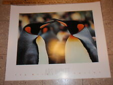 VINTAGE ART WOLFE POSTER PRINT THE WILDLIFE COLLECTION 32 X 26 BRUCE MCGAW 1991