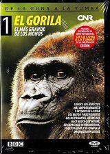 De la cuna a la tumba 1: EL GORILA, el más grande de los monos. Documental BBC