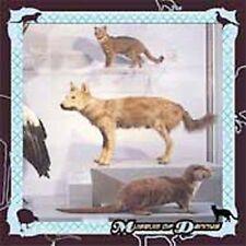 COHEN,DANNY-Museum Of Dannys CD NEW