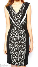 Warehouse Spotlight Panelled Lace Insert Bodycon Dress UK 16 Black/Cream New