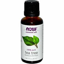 Tea Tree (100% Pure), 1 oz - NOW Foods Essential Oils
