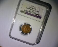 """1877 INDIAN HEAD CENT """"THE BIG ONE"""" !   """"KEY DATE""""   EXTREMELY RARE  US Coin"""