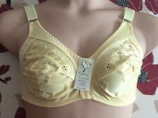 LEMON SILKY FEEL SUPPORT BRA SIZE 36D