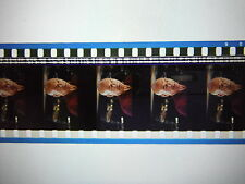 Star Trek First Contact 35mm Unmounted film cells - Picard
