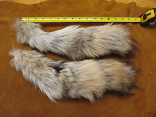 1 coyote tail/ pelt/Coyote/Fox/Hides/native crafts/key chain/headdress
