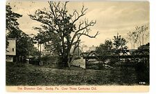 Darby PA - 300 YEAR OLD BLUNSTON OAK - Postcard