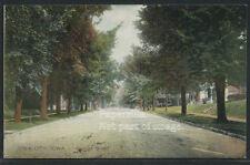 IA Iowa City ROTOGRAVURE 1910's COLLEGE STREET by PCK Series No11261 for Wieneke