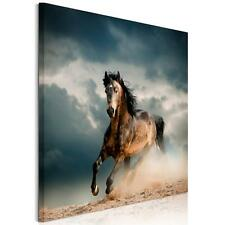 HD Fashion Canvas Prints Home Decor Wall Art Painting Horse Animal Unframed New