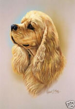 Robert J. May Head Study - Buff Cocker Spaniel  (RMDH051)