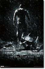 2012 DC COMICS THE DARK KNIGHT RISES MOVIE BANE NEW POSTER 22x34 FREE SHIPPING