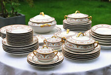 Dinner Service LIMOGE Haviland Paris Vintage Plates bowls Tureens 40 Piece 8 set