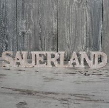 Sauerland Schriftzug aus Holz 40cm braun Buchstaben Wanddeko Holzschild NEU