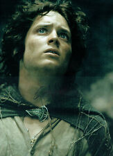 Elijah WOOD SIGNED Autograph Lord of the Rings Film 16x12 Photo AFTAL COA