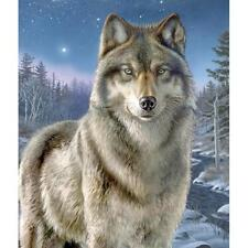 """Artist's Collection  NIGHT WATCH Wolf Paint by Number Kit  9"""" X 12"""""""