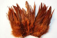Saddle-Federn Wapsi USA 14 - 17 cm lang BRAUN