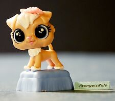 Littlest Pet Shop Pets in the City Wave 1 Puttin' on the Glitz #22 Tan Dog Blue
