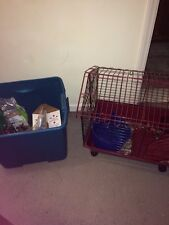 Guinea Pig Cage And Toys