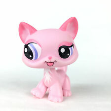 Authentic Littlest Petshop 1313 Kitty Kitten Cat / Chat Maine Coon LPS Hasbro..