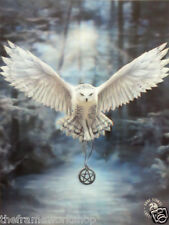 ANNE STOKES AWAKE THE MAGIC OWL - 3D CULT/FANTASY PICTURE 300mm x 400mm