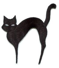 BLACK CAT white eyes EMBROIDERED IRON-ON PATCH **Free Shipping** -c p3488 kitten