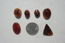 402  LOT OF 6  FIRE AGATE CABS.  DISCOUNT FIRE AGATE CABS FROM CLOSED ROCK SHOP