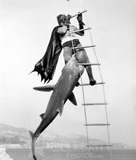 BATMAN photo 0434 Adam West Shark 1966