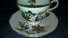 Beautiful Rosina China Tea Cup and Saucer