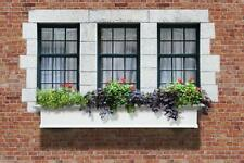 "New Mayne Yorkshire II 72"" Window Box Outdoor Flower Planter - White 6'"