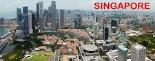 PANORAMA FRIDGE MAGNET of SINGAPORE