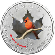 1 Oz Silber Maple Leaf Farbe 2017  Canadian Birds Northern Cardinal Vögel Kanada