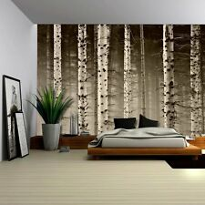 A Close Up View of a Birch Tree Forest - Wall Mural, Removable Sticker- 100x144