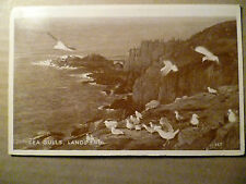 Vintage Postcard Sea Gulls, Land's End 157 (2D Postage Revenue)